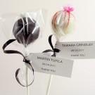Seamless Cake Pop Cellophane Bags- 110 x 75mm - 100pk
